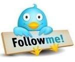 twitter_birdie